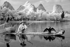 YANGSHUO - JUNE 18: Chinese man fishing with cormorants birds in Stock Image