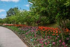 Yangzhou spenslig västra sjöträdgård Royaltyfria Bilder