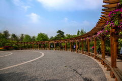 Yangzhou spenslig västra sjöträdgård Arkivfoto