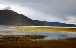 Yangzhuoyongcuo - lago tibet Fotografia Stock Libera da Diritti