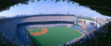 Yankee Stadium, yankee di NY v Tampa Bay, New York immagine stock libera da diritti