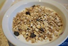 Yaourt avec la granola image stock