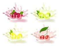 Yaourt avec le fruit frais illustration libre de droits