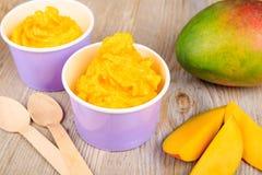 Yaourt crémeux surgelé de glace avec la mangue fraîche photographie stock