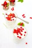 Yaourt de groseille rouge Image libre de droits