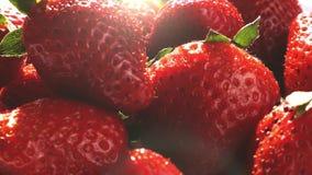 Yaourt de versement sur des fraises dans le mouvement lent superbe banque de vidéos