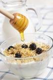 Yaourt, muesli, mûre, et miel image libre de droits
