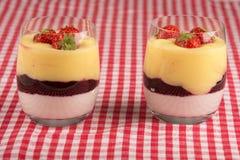 Yaourt, vanille et fraises Photos libres de droits