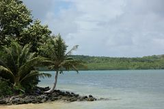 Yap Island. The coast of Yap Island, Federate States of Micronesia Stock Photography