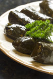 Yaprak Dolma, Stuffed Grape Leaves Royalty Free Stock Photo