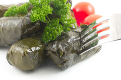 Yaprak Dolma, Stuffed Grape Leaves Stock Photos