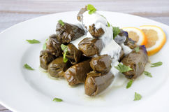 Yaprak sarma Turkish cuisine Royalty Free Stock Images