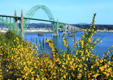 Yaquina Bay Bridge Stock Image