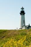 Yaquina Hauptleuchtturm Oregon Lizenzfreies Stockfoto