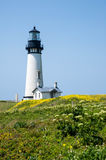 Yaquina Head Lighthouse in bloom Royalty Free Stock Image