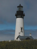 Yaquina-Kopf-Leuchtturm - Oregon Stockbild