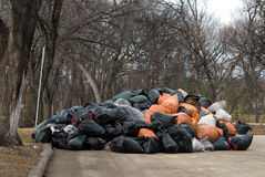 Yard-Abfall lassen weg Site fallen Stockfotografie
