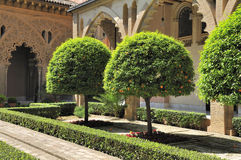 The yard of Aljaferia palace. Zaragoza (Aragon, Spain) The yard of the Aljaferia palace with orange trees Stock Images