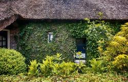Yard antique et façade verte, maison néerlandaise Image stock