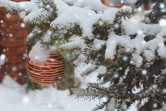 Christmas tree in the snow. royalty free stock images