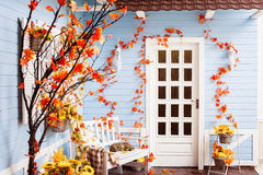 Yard of country house with tiling roof, blue wooden walls. White door, decorated with autumn leaves and flowers. Slipping cat on the white bench Stock Photography