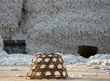 Yard d'usine de traitement de coton Image libre de droits
