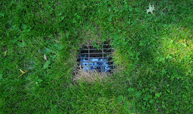 Yard Drain Stock Image