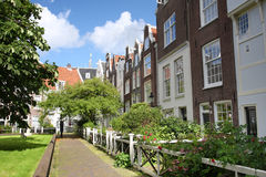 Yard with flowers and houses in Amsterdam Royalty Free Stock Photos