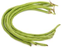Yard long bean isolated on the white background. Vegetables stock photography