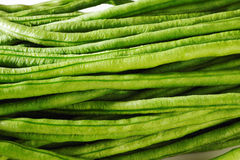 Yard long bean on white. Background royalty free stock photo