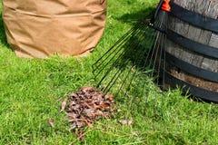 Yard maintenance Royalty Free Stock Image