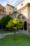 Yard of the old cathedral in Tarragona. Royalty Free Stock Image