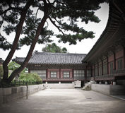 Yard, pine trees, ancient house of Korean Palace. Part of building in Gyongbokugung Palace, Seoul Stock Photos