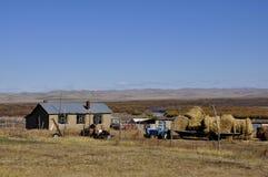 Yard on the prairie. Gen he wet land ,hulun buir prairie,china Stock Photo