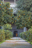 A yard of the Primate Cathedral of Saint Mary of Toledo. With a garden of orange trees, gates and a footpath, Castilla-La Mancha, Spain Royalty Free Stock Image
