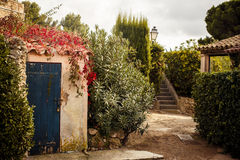 Yard in Saint Tropez. View of yard in Saint Tropez, French Riviera royalty free stock photography