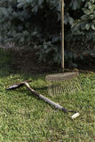 Yard Tools. Old and well used garden tools near an evergreen tree Stock Image