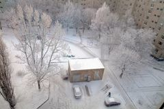 Yard in winter town and trees in snow.  Stock Photo
