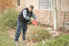 Yard work. Mature male doing yard work Royalty Free Stock Photo