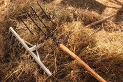 Yard-work is finished royalty free stock photography