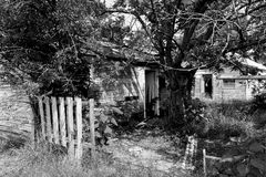Yard Work Needed. Black and white shot of a backyard of an abandoned and neglected home Royalty Free Stock Photo