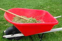 Yard Work Red Wheel Barrow. A red wheel barrow with raked grass from cleaning the lawn stock images