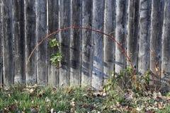 Yarda-Cerca-plantas Foto de archivo libre de regalías