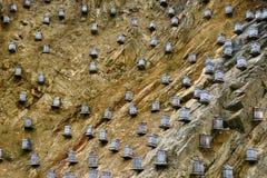 Yarda de la abeja Foto de archivo libre de regalías