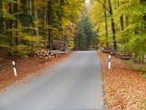 Yarda de madera cerca de una calle en otoño Fotografía de archivo