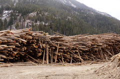 Yarda de madera de construcción Fotografía de archivo libre de regalías
