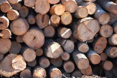 Yarda de madera de construcción Fotos de archivo