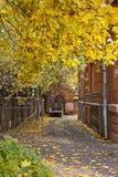Yarda del otoño de Moscú Imagen de archivo