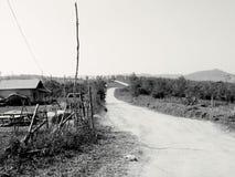 Yarda del país Foto de archivo libre de regalías