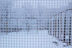 Yarda nevada del deporte detrás de la red escarchada de la rejilla del metal en invierno imagen de archivo